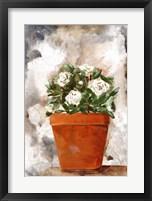 White Flower Clay Pot I Framed Print