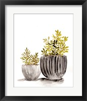 Framed Gray Potted Plants