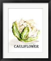 Framed Veggie Sketch VI-Cauliflower