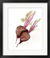 Veggie Sketch plain IV-Brown Beets Framed Print