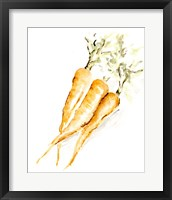 Framed Veggie Sketch plain V-Carrots