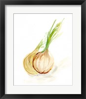 Framed Veggie Sketch plain X-Onion