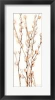 Fall Botanical Panel II Framed Print