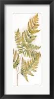 Fall Botanical Panel III Framed Print
