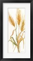 Fall Botanical Panel IV Framed Print