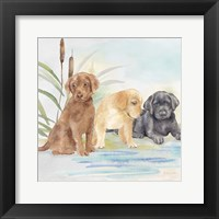 Framed Woodland Dogs III