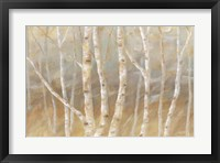 Framed Autumn Birch landscape