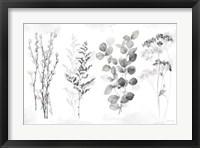 Framed Indigo Botanicals landscape neutral