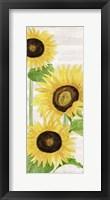 Fall Sunflowers panel I Framed Print