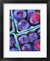 Framed Blueberry Carton