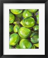 Framed Tropical Limes