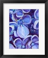 Framed Lavender Floral Close Up