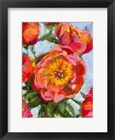 Framed Rose Mix