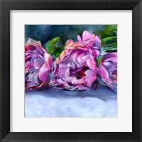 Framed Roses lying down