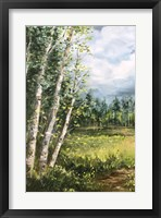 Framed Colorado Meadow panel I
