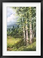 Framed Colorado Meadow panel II