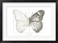 Framed Butterfly Sketch landscape II
