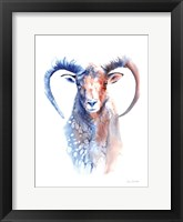 Framed Copper and Blue Ram