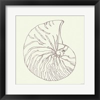 Coastal Breeze Shell Sketches VII Silver Framed Print