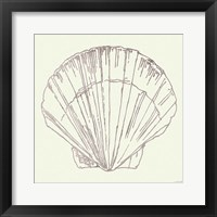 Framed Coastal Breeze Shell Sketches V Silver