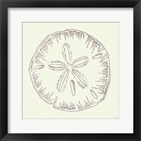 Coastal Breeze Shell Sketches IV Silver Framed Print