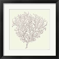 Coastal Breeze Shell Sketches I Silver Framed Print