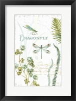My Greenhouse Botanical Dragonfly Framed Print
