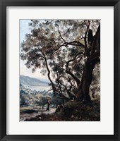 Framed Roquebrune, 1892