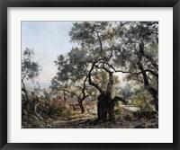 Framed Lodola, close to Menton, 1892