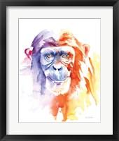 Framed Chimpanzee II