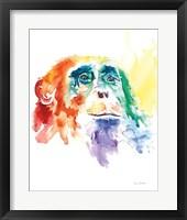 Framed Chimpanzee I