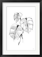 Wash Split Leaf I Framed Print