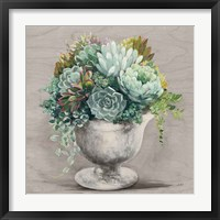 Festive Succulents I Gray Framed Print