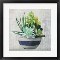 Succulent Still Life II Navy Framed Print