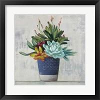 Succulent Still Life I Navy Framed Print
