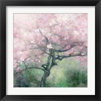 Framed Blooming Apple Tree