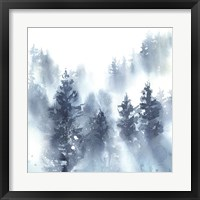 Misty Forest II Framed Print