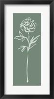 Floral Line II Green Framed Print
