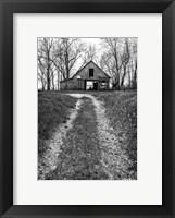 Framed Barn and Hoop