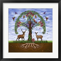 Framed Tree of Life