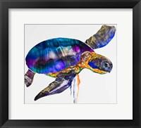 Framed Sea turtle