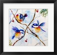 Framed All A-Flutter