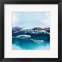 Framed Beluga Escort
