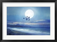 Framed Birds Flying 2