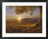 Framed Sundown Tree