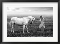 Framed Her White Horse