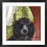 Framed Black Poodle