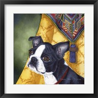 Framed Boston Terrier