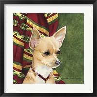 Framed Chihuahua