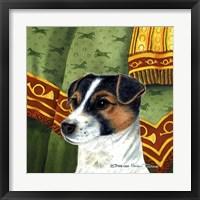 Framed Jack Russell Terrier